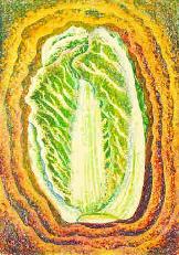 Brassica rapa subsp. pekinensis