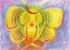 Ein feenhafter Schmetterling