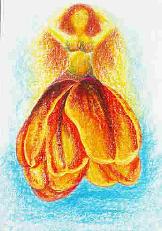 Tanzende Tulpe
