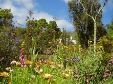 Palheiro Gardens (Blandy's Garden), Madeira