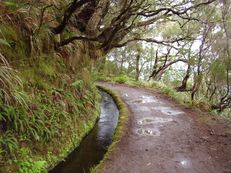 Rabaçal, Madeira
