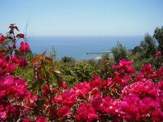 Meerblick in Funchal