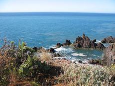 Küstenlandschaft in Funchal
