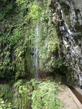 Levada do Rei, Madeira