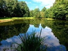 Aglasterhausener Seen