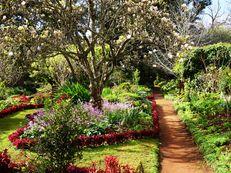 Frühling in Palheiro Gardens