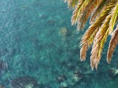 Atlantic Summer